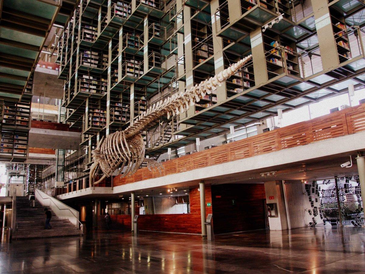 Dünyanın en büyük kütüphaneleri 7
