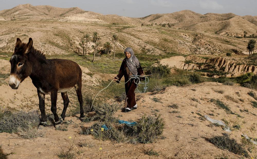 Tunus'un yeraltı evlerinde yaşayan son aileler 10