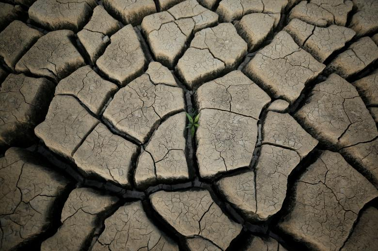 Dünya su günü 3