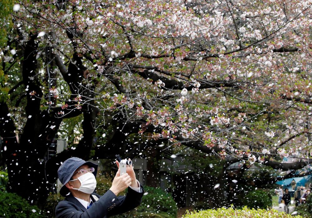 Farklı ülkelerden etkileyici bahar kareleri 6