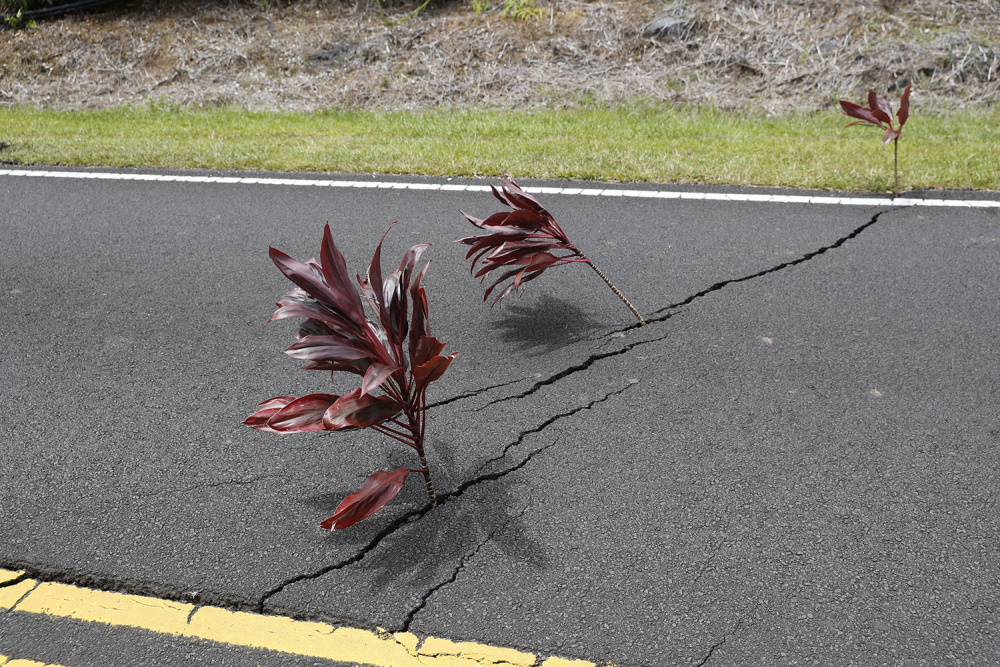 Hawaii'de yanardağ alarmı 17