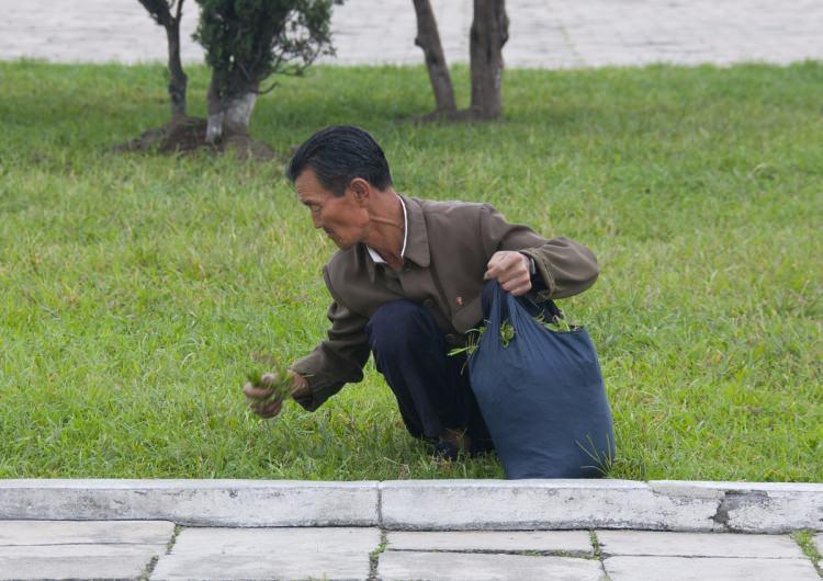 Kuzey Kore'nin yasak fotoğrafları 31