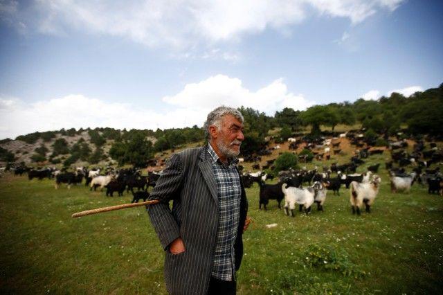 Bin yıllık hikaye: Anadolu'da yaşayan son göçebe yörükler 1