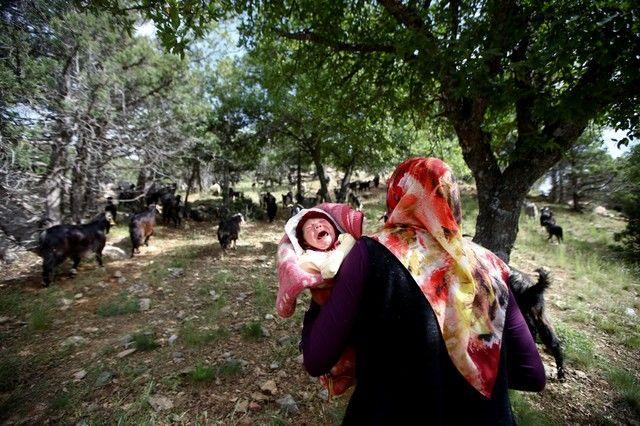 Bin yıllık hikaye: Anadolu'da yaşayan son göçebe yörükler 4