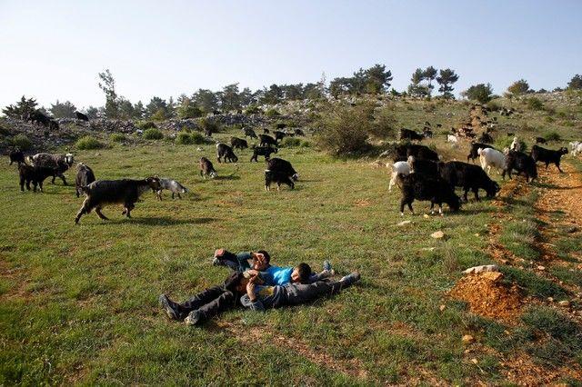 Bin yıllık hikaye: Anadolu'da yaşayan son göçebe yörükler 5