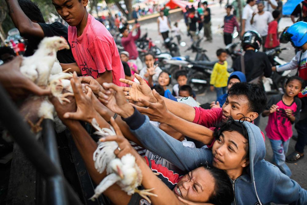 Endonezya'daki yıkıcı felaketten geriye kalanlar 22