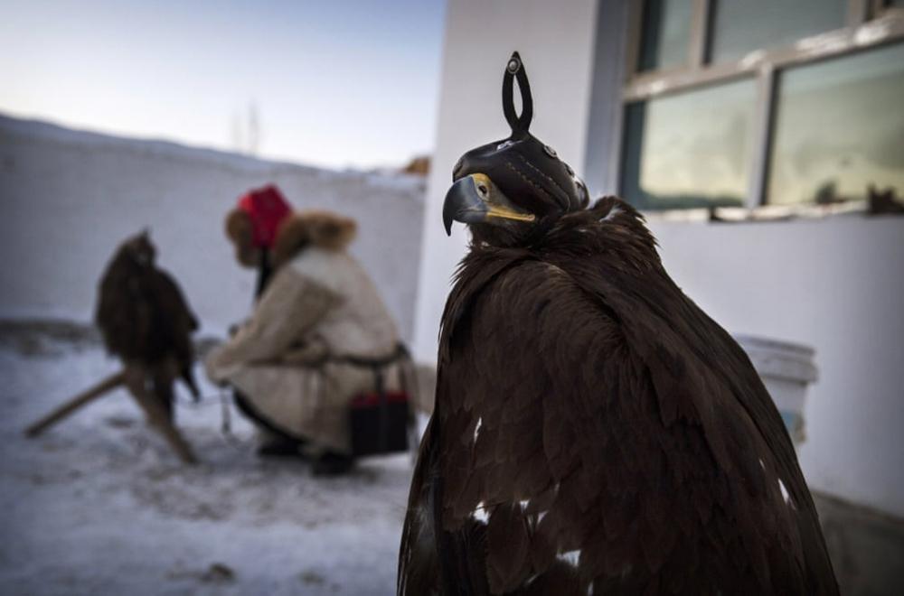 Kazakistan'daki geleneksel avcılık festivalinden kareler 3