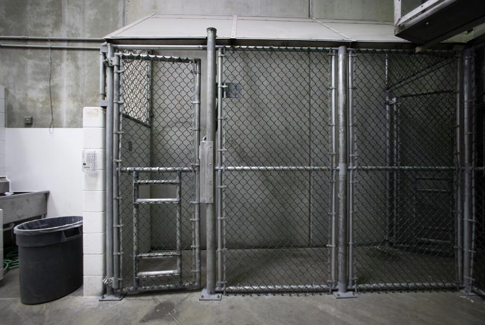 Guantanamo İçinde 16