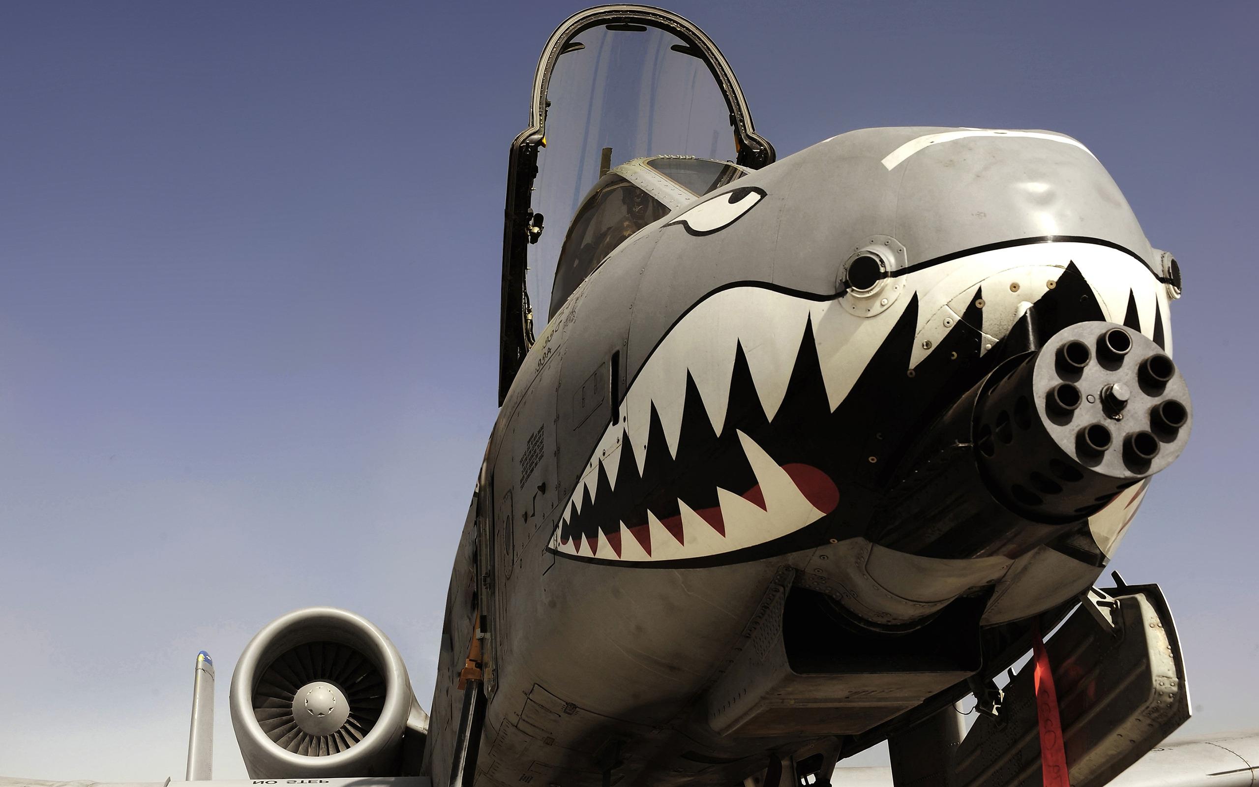 Kabil hükümeti ABD'den 'katil uçakları' istiyor