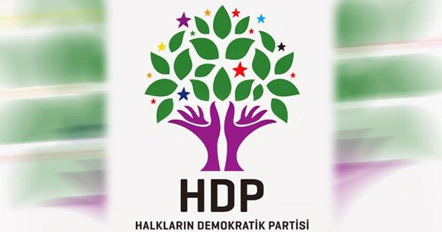 HDP: Kayyum kararı hukuka aykırı
