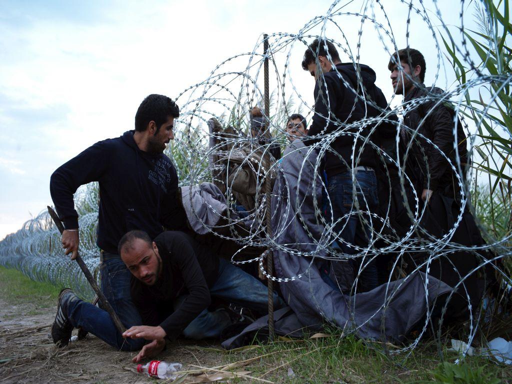 Macaristan'da mülteci referandumu
