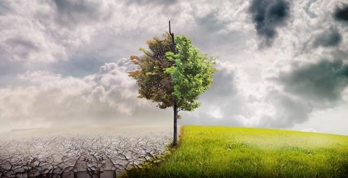 ABD halkı doğaya 'ideolojik' bakıyor