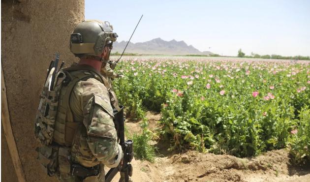 BMGK'da Afganistan toplantısı: Taliban'ın masaya oturması şart