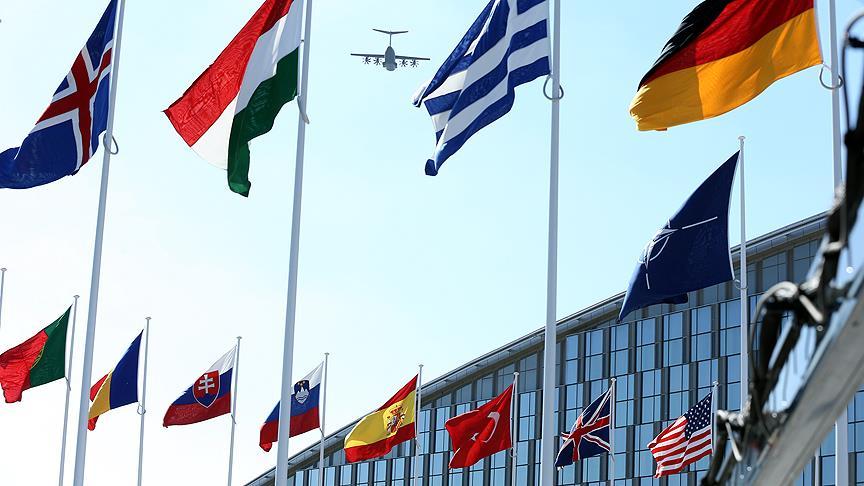 NATO'dan 'Zeytin Dalı'na destek mesajı