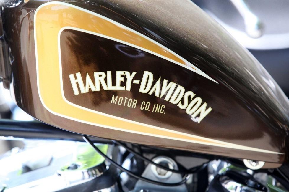 Harley de 'elektrik' dedi