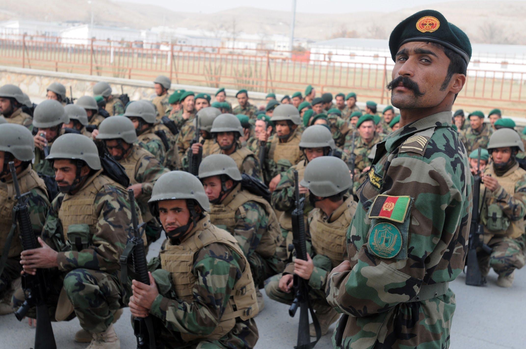 'Kabil hükümetinin askeri operasyonları Taliban'a etki etmiyor'