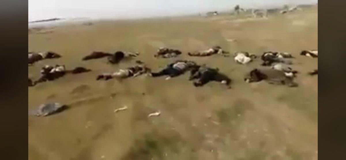 İdlib'de IŞİD-rejim ittifakı kısa sürdü