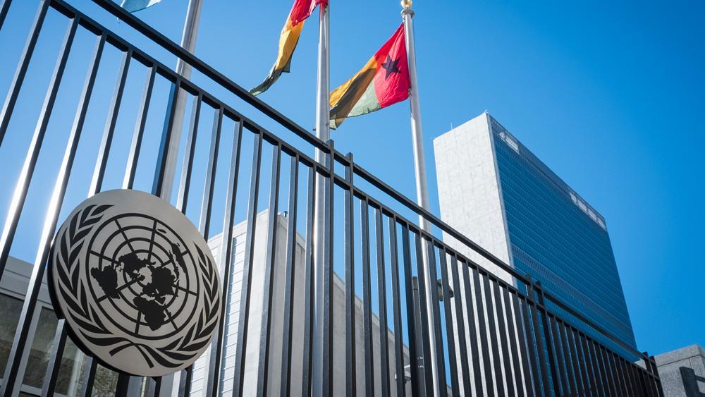 Birleşmiş Milletler 'aidat' ödemeyen iki ülkenin oy hakkını dondurdu