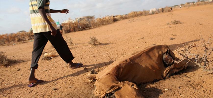 Somali yeniden gündemde: BM'den 'insani yardım' çağrısı