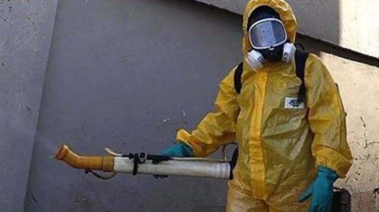 Zika virüsü artık dünyayı tehdit etmiyor