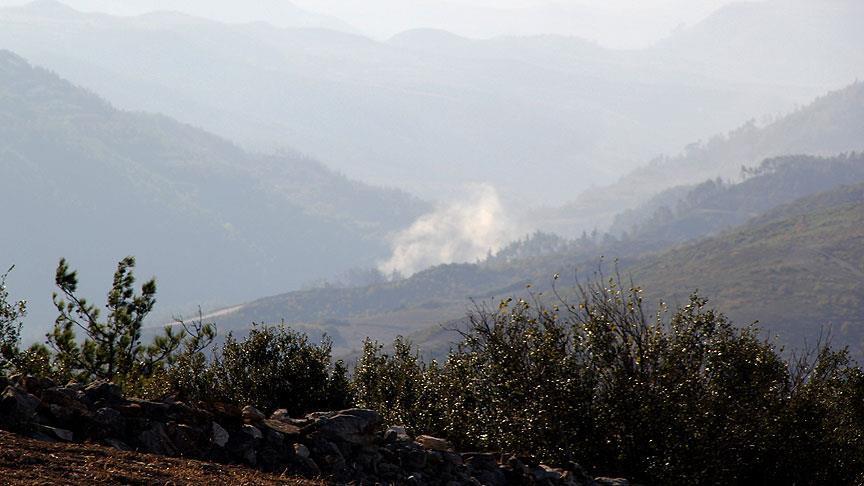 Rejim, Türkmen ve Kürt dağında saldırı başlattı