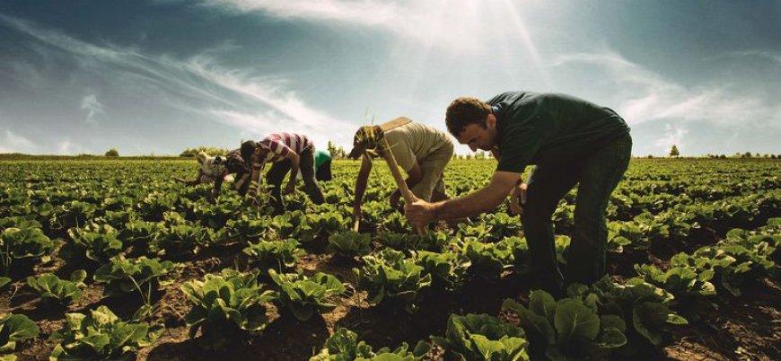 İsrail Türkiye'den tarım ithalatını dondurdu