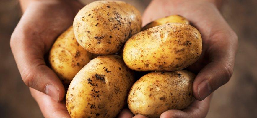 Patates üreticileri hükümete tepkili: Üretim bu şekilde sürdürülemez
