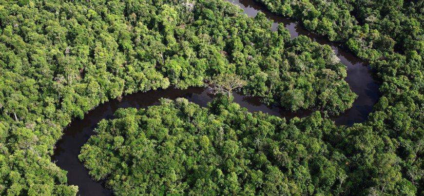 Kabilenin son üyesi 22 yıldır Amazonlarda tek başına yaşıyor