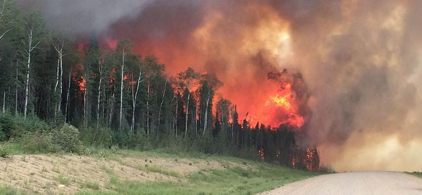 Kanada'da orman yangınları sebebiyle olağanüstü hal ilan edildi