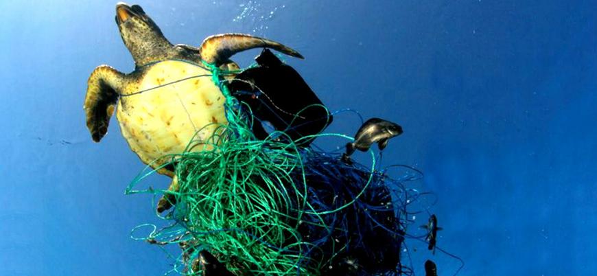 Denizleri en çok hangi şirketler kirletiyor?