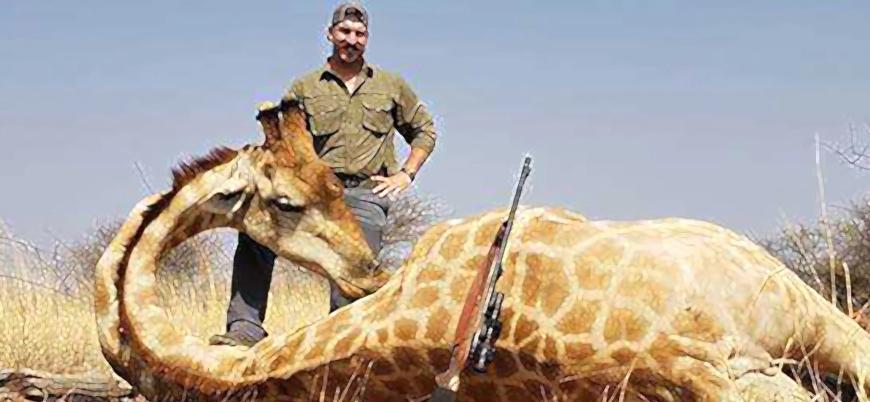 ABD'li doğal hayatı koruma yetkilisinden safari katliamı