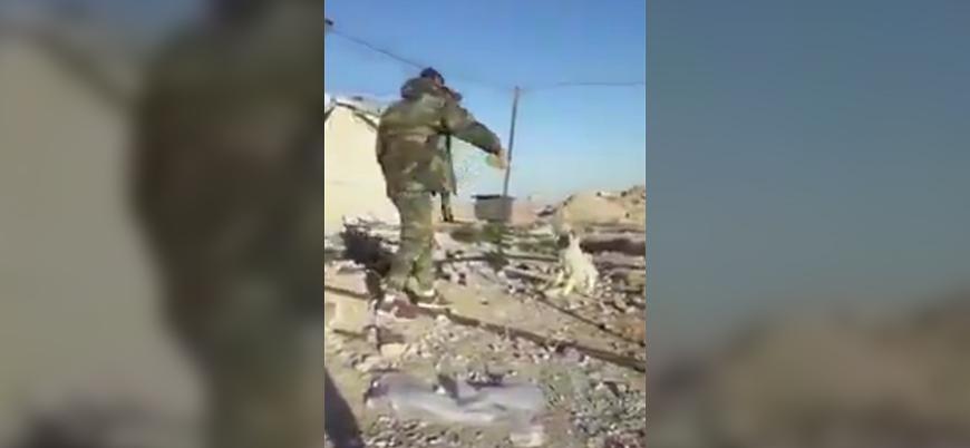 Esed rejimi askerleri köpeği yakarak vahşice öldürdü