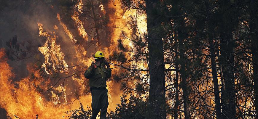 Kaliforniya'da yangınların artmasının nedenleri neler?