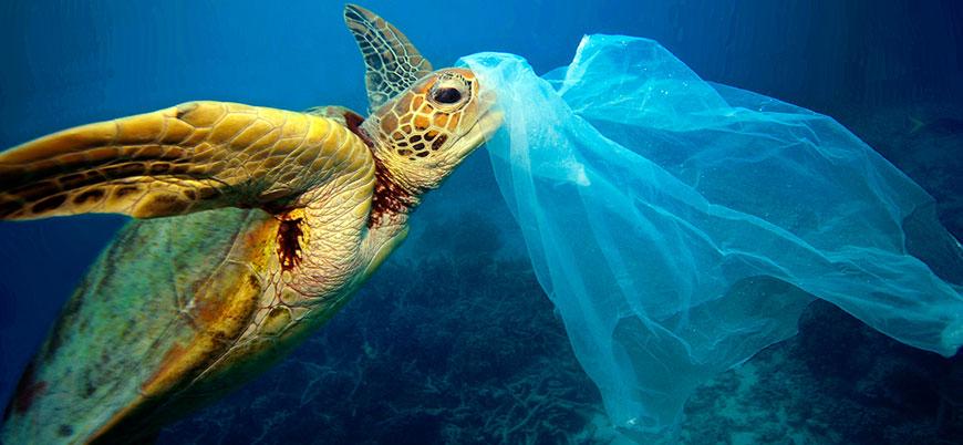 Avrupa Birliği tek kullanımlık plastikleri yasaklayacak