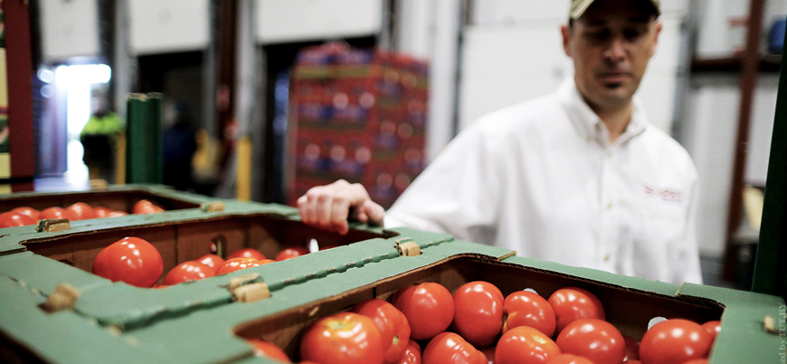 Rusya Türkiye'den getirilen 124 ton domatesi ülkeye sokmadı