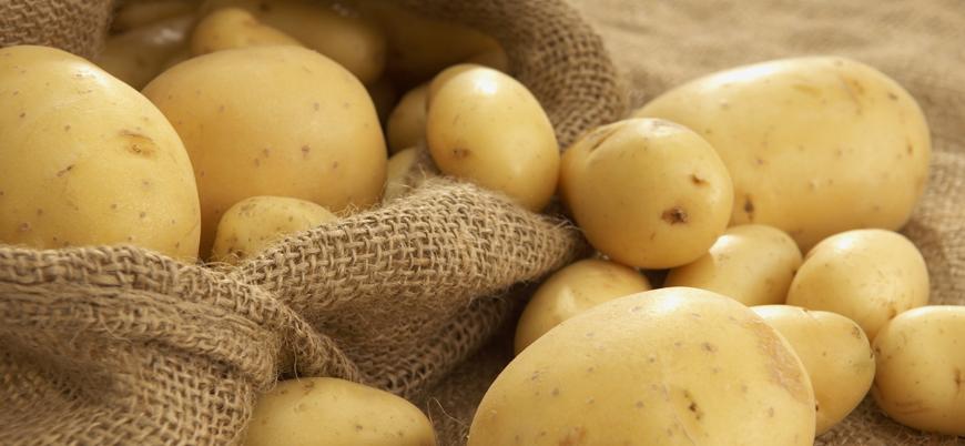 Patateste sıfır gümrük vergisi uygulaması uzatıldı
