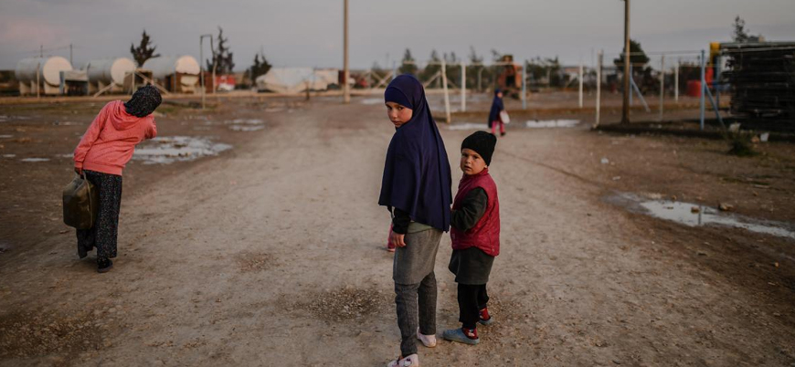 Suriye'de IŞİD ailelerinin tutulduğu kamplarda 2 bini aşkın yabancı uyruklu çocuk var