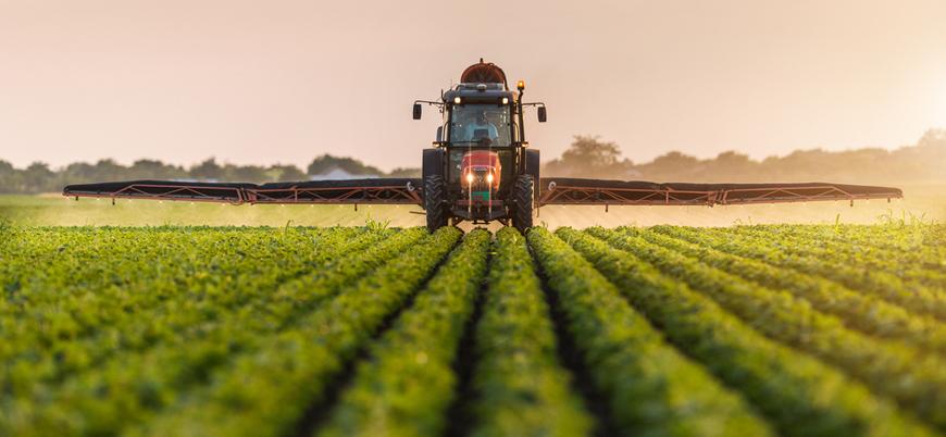 Gelecek 10 yılda tarım ürünleri fiyatları düşecek