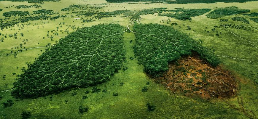 Dünya'nın 1 yıllık doğal kaynağı 29 Temmuz'da tükendi
