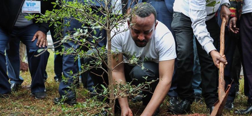 Etiyopya'da 200 milyon fidan dikilecek