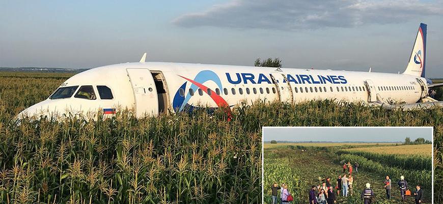 Rusya'da 234 kişiyi taşıyan uçak mısır tarlasına acil iniş yaptı