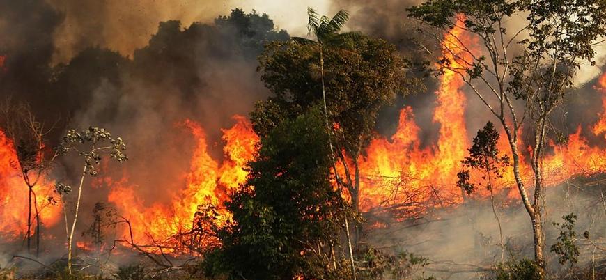 Bolsonaro: Orman yangınlarını çevreciler çıkarıyor olabilir