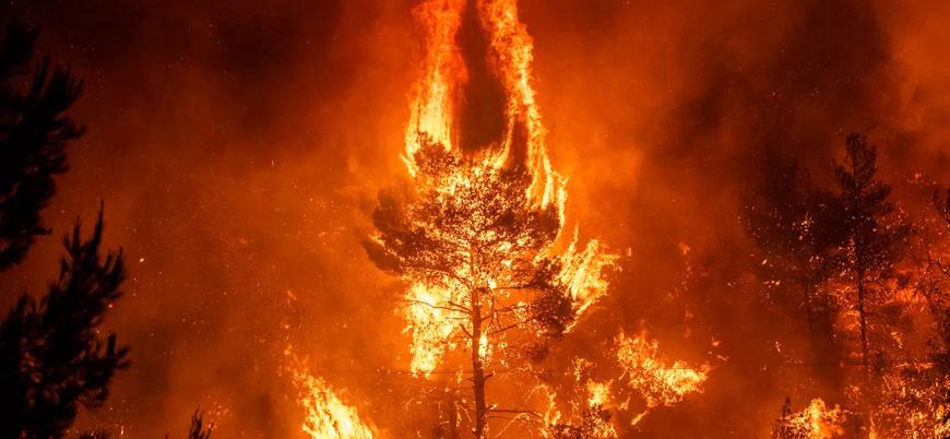 Amazon Ormanları'nda iki günde bin 663 yangın çıktı