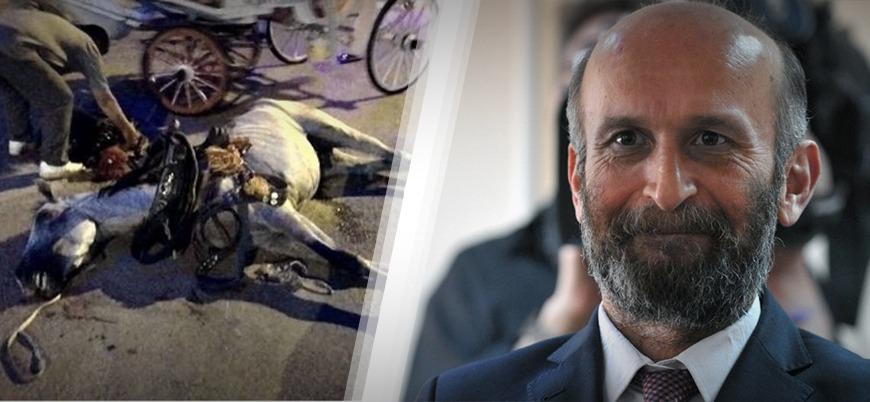 CHP Adalar Belediye Başkanı Erdem Gül: Faytonlar yasal bir taşıma aracı, kalkacak diyemeyiz