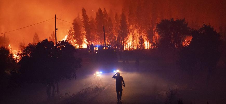 Dünya alev alev yanıyor: 2019'da 16 milyon orman yangını yaşandı