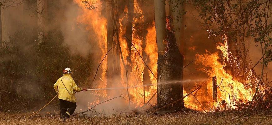 Suudi Arabistan'dan yangınlarla mücadele eden Avustralya'ya yardım teklifi