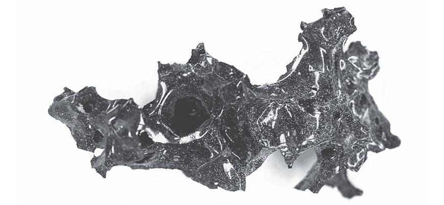 Pompei antik kentinde yanardağ patlaması sonucu camlaşmış insan beyni bulundu