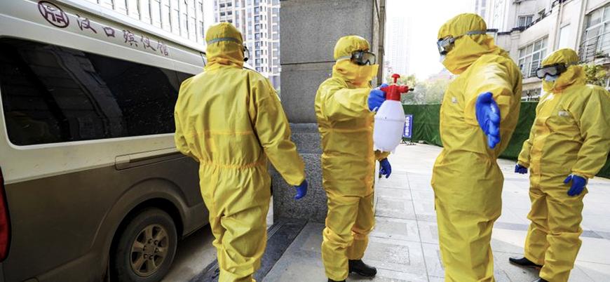 Koronavirüsün ardından Çin'de 'kuş gribi' salgını