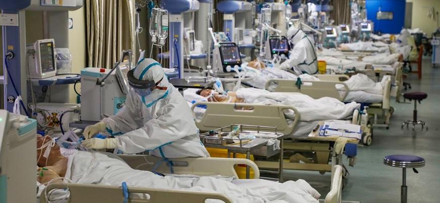 DSÖ: Koronavirüse karşı geleneksel tıp da kullanılmalı