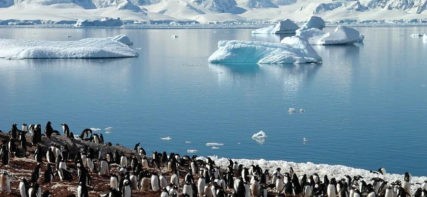 Antarktika'da sıcaklık 20 derecenin üzerine çıkarak rekor kırdı